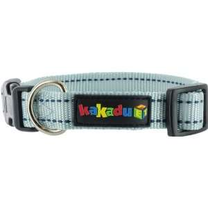 Kakadu Pet Empire Tracks Adjustable Nylon Dog Collar, 1 x 20 34, Sky