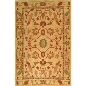 Safavieh   Rodeo Drive   RD275A Area Rug   5 x 8   Multi
