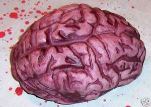 Bloody Brain Halloween Prop Decoration Body Parts Gag