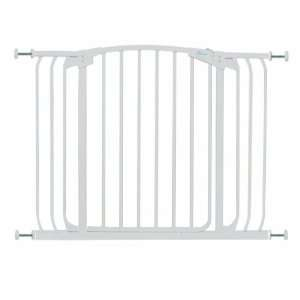 Hallway Swing Close Security Gate (29H x 42.5W) from
