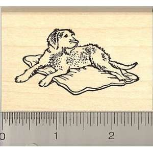 Labradoodle Dog Rubber Stamp   Wood Mounted Arts, Crafts