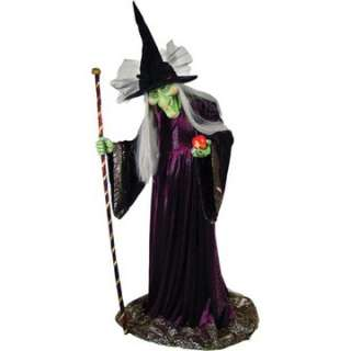 Willow Witch Prop   Haunted House Props   15MR124034